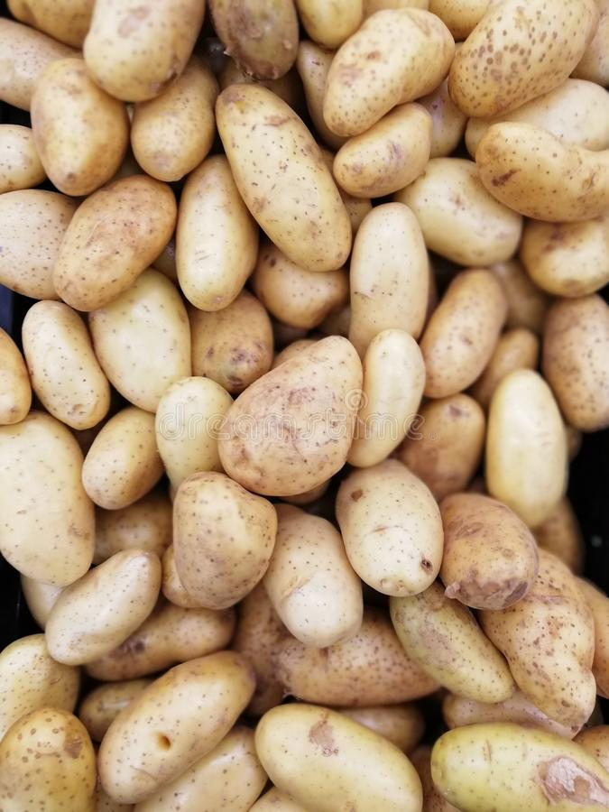 pile of potato stock image