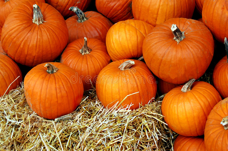 Pile of Pumpkins. Pumpkins piled up at a local farmer's market stock images