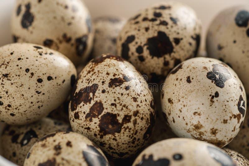 Pile of quail eggs close-up macro shot. Selective focus royalty free stock images