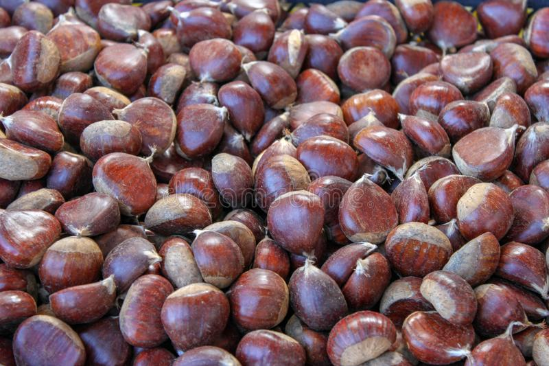 Pile of raw chestnuts stock images