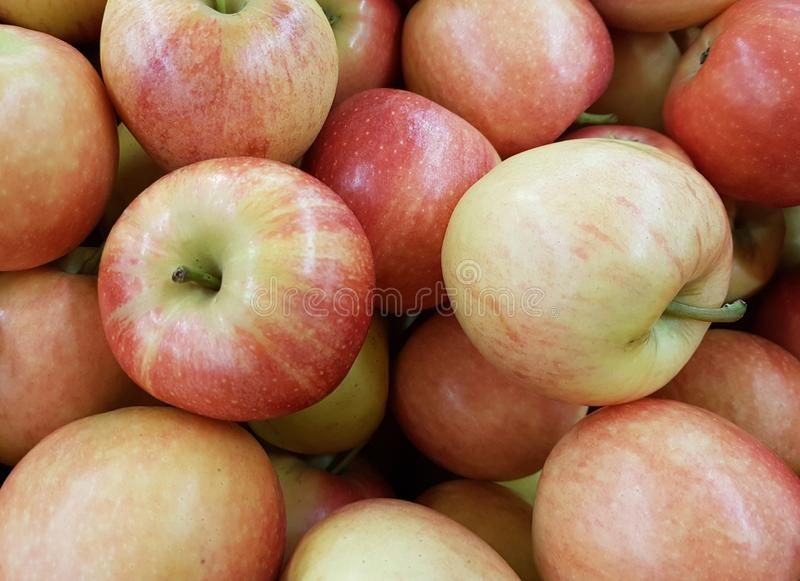 A pile of red apples closeup. Agriculture, apple, autumn, background, bunch, closeup, color, colorful, cooking, delicious, diet, eating, food, fresh, freshness stock photos