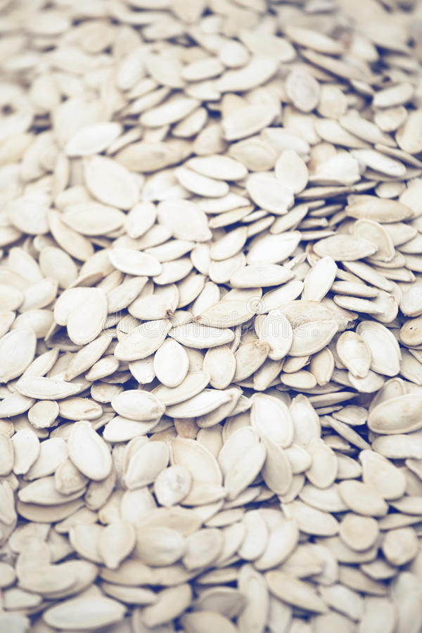 Pile of roasted and salted pumpkin seeds 2 royalty free stock images