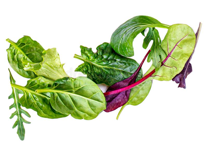 Pile of Salad Leaves isolated on white background. Green  salad with arugula, lettuce, chard, spinach and beets leaf royalty free stock image