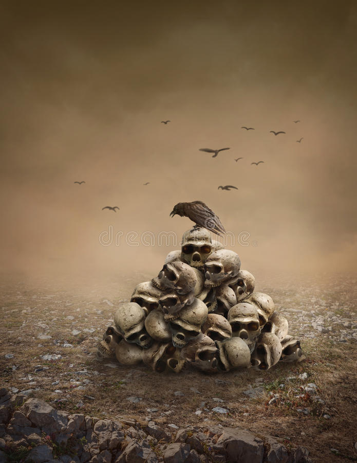 Pile of sculls. Crow sitting on a pile of sculls royalty free stock photos