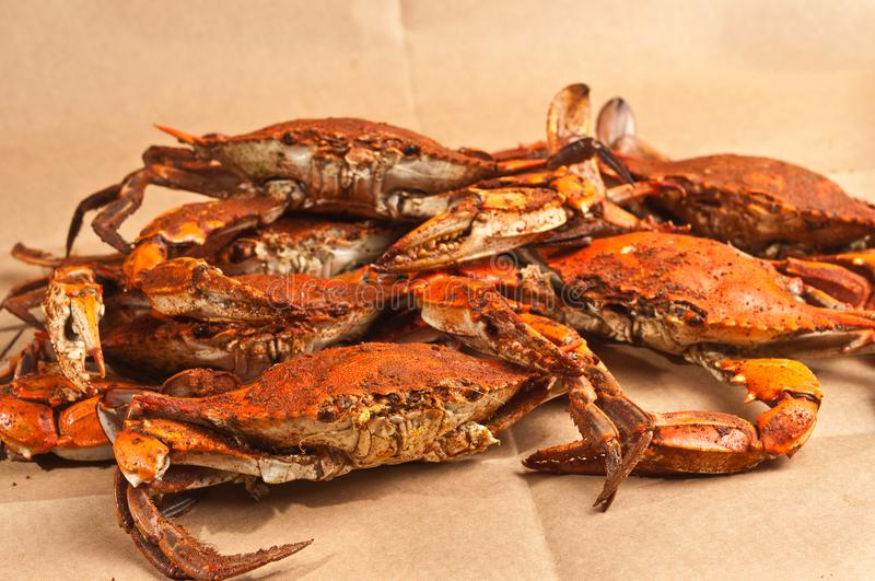 Pile of steamed and seasoned Chesapeake Blue Claw crabs. On a brown, paper table cloth hot out of the steamer royalty free stock images