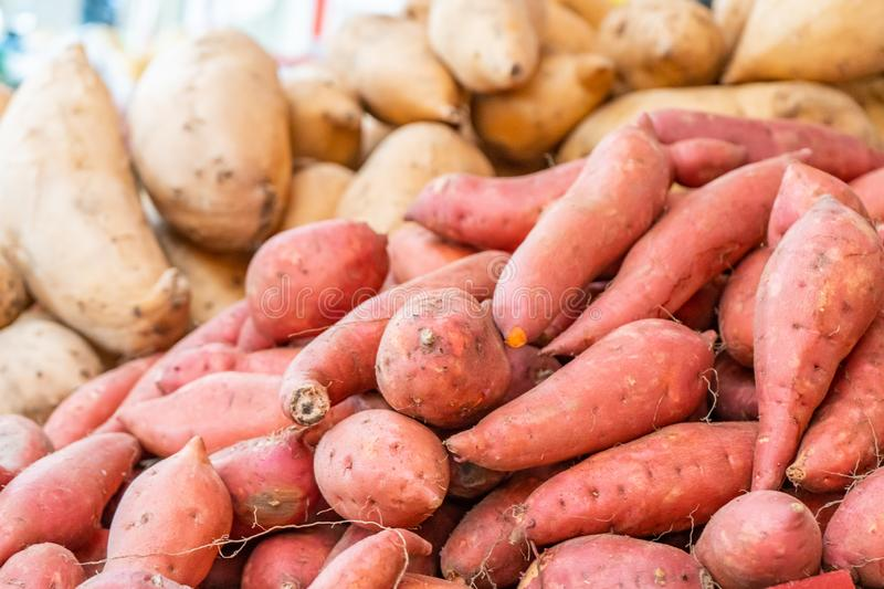 Pile of sweet potatoes and yams being sold at a farm stand farmer`s market stock images