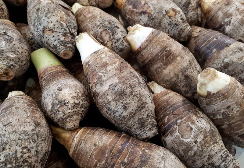 A pile of taro. For background royalty free stock image