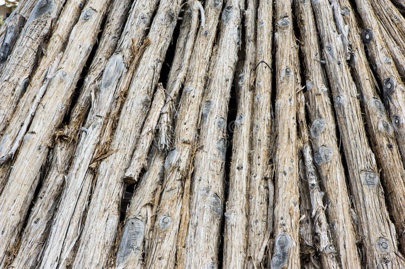 Download Pile of tree trunks stock photo. Image of background - 30529120