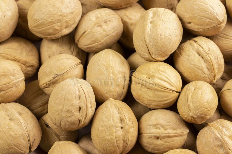 Pile of walnuts in shell, background wallpaper close-up. Nuts structured walnut shell texture. Healthy Protein Meal. Snack stock image