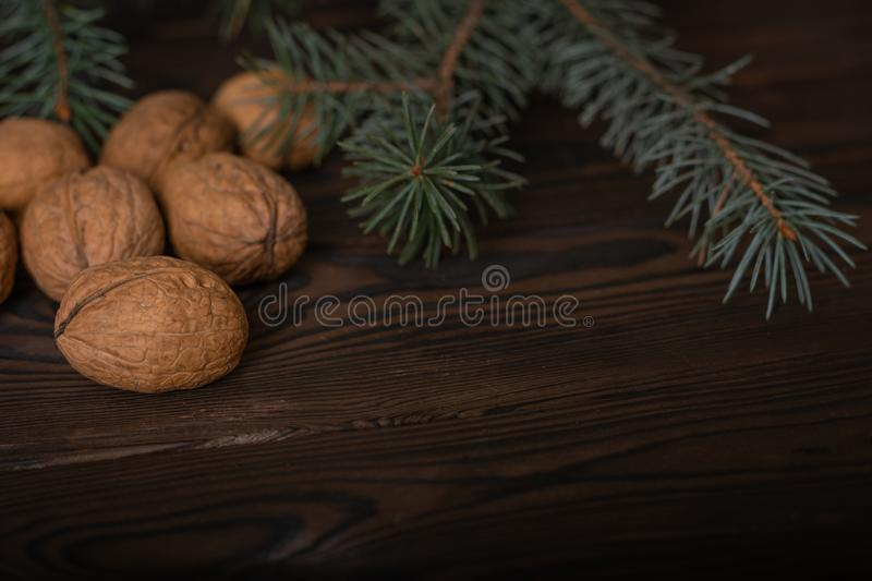 A pile of whole unpeeled walnuts. above them lies a real branch of spruce. preparation for the new royalty free stock photos