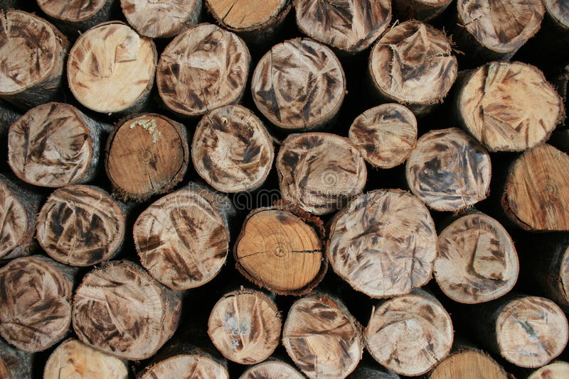 Pile of Wood. Close up from a pile of wood for fire in winter stock image