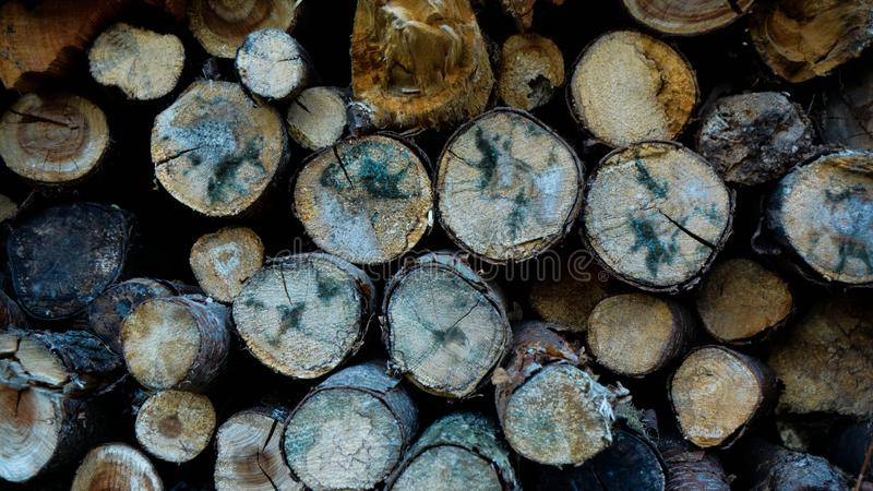 Pile of wood detail royalty free stock photography