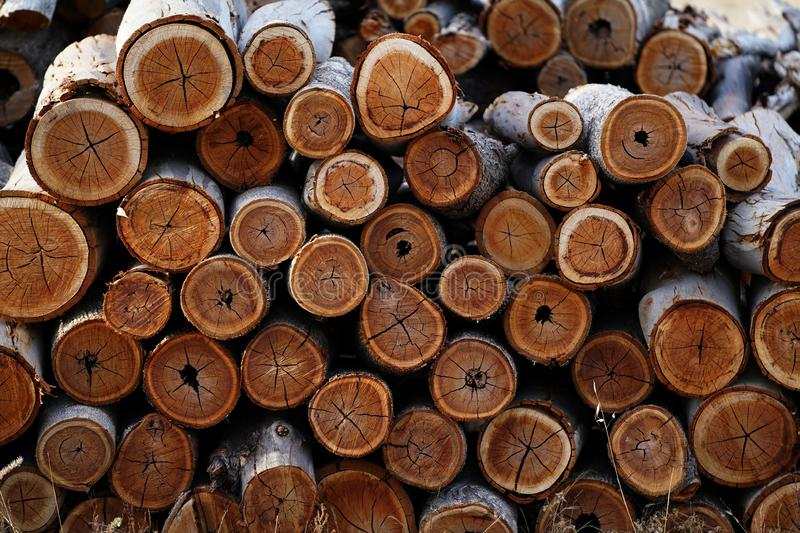 A pile of wood - firewood prepares a fireplace, Background and creates a beautiful texture stock images