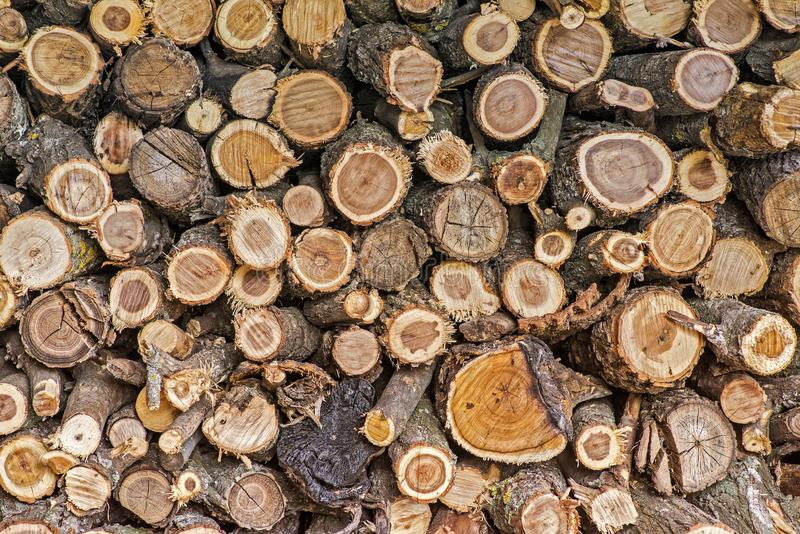 Pile of wood logs. Wood logs texture background. Pile of wood logs ready for winter. Pile of wood logs storage for industry.  royalty free stock image