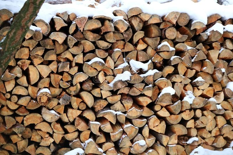 A pile of wooden logs royalty free stock images