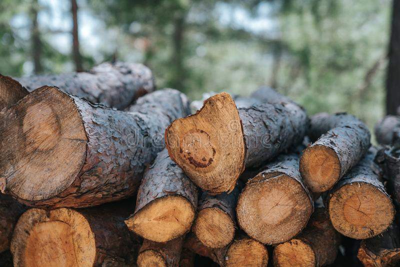 A pile of wooden logs prepares for the wood industry. A pile of wooden logs prepares for the wood industry stock photography