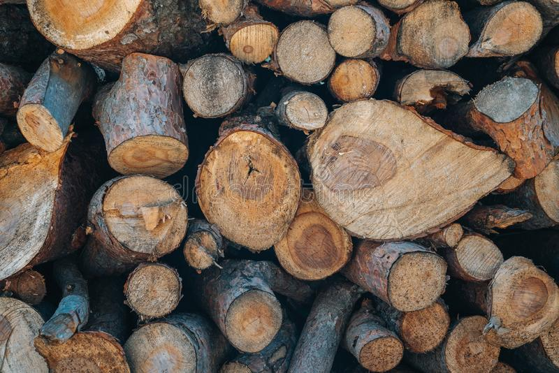 A pile of wooden logs prepares for the wood industry. A pile of wooden logs prepares for the wood industry stock photos