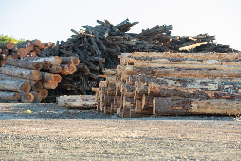 Piles de bois de construction, de bois de charpente et de bois réutilisé images stock