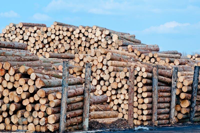 Piles de bois de charpente images libres de droits