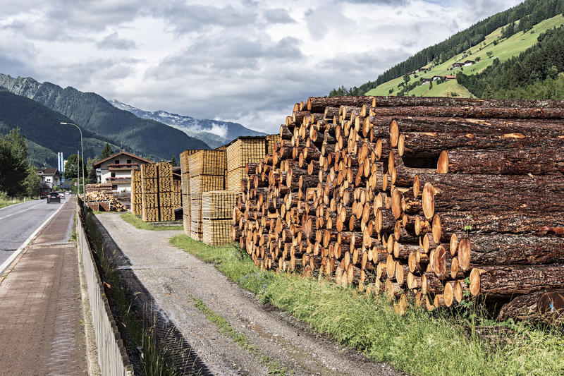Piles de bois de charpente dans une scierie image stock