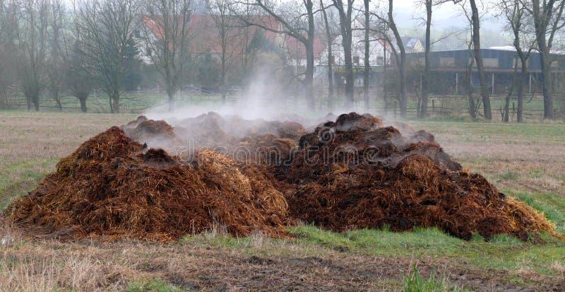 Piles de fumier photographie stock