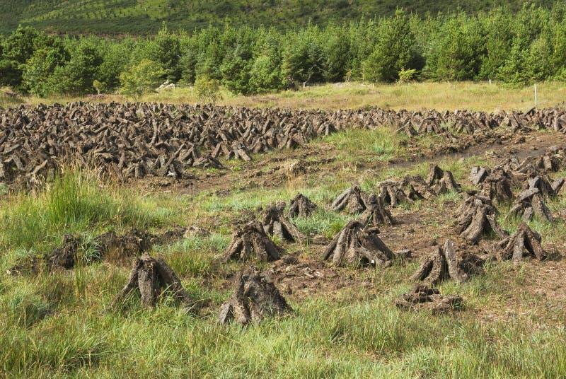 Piles de gazon en Irlande images stock