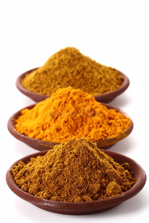 Piles de poudre de cari et de safran des indes lumineux images stock