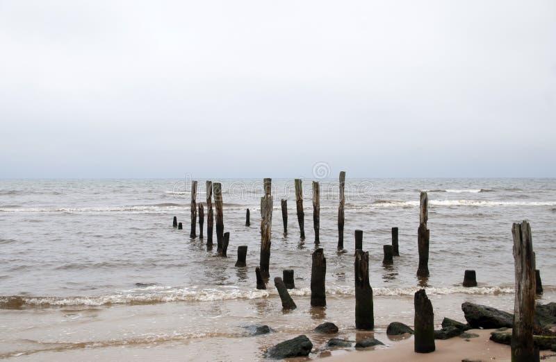 Piles de vieille jetée sur la côte de la mer baltique, Lettonie image libre de droits