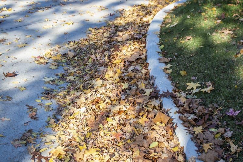 Piles des feuilles d'automne sèches soufflées contre une restriction dans le secteur résidentiel avec certains sur l'herbe d'une  images stock
