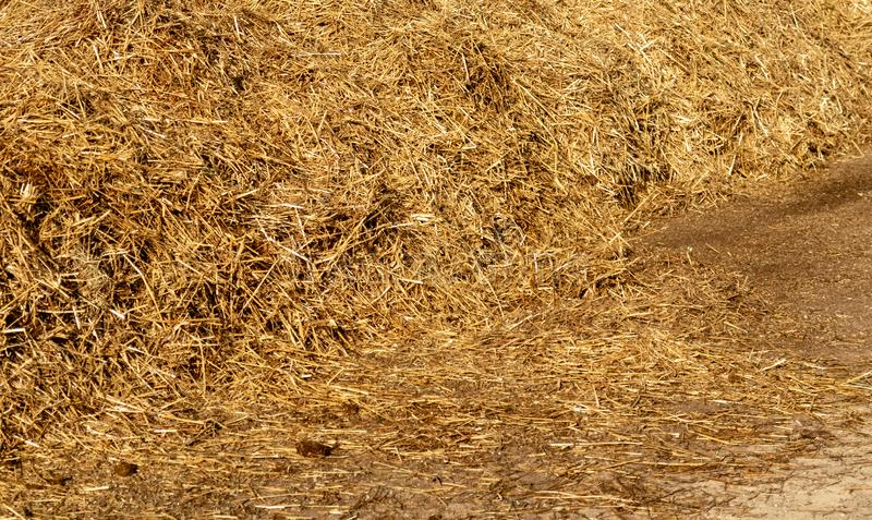 Piles of Hay at Churchill Downs. In Louisville, Kentucky stock photo