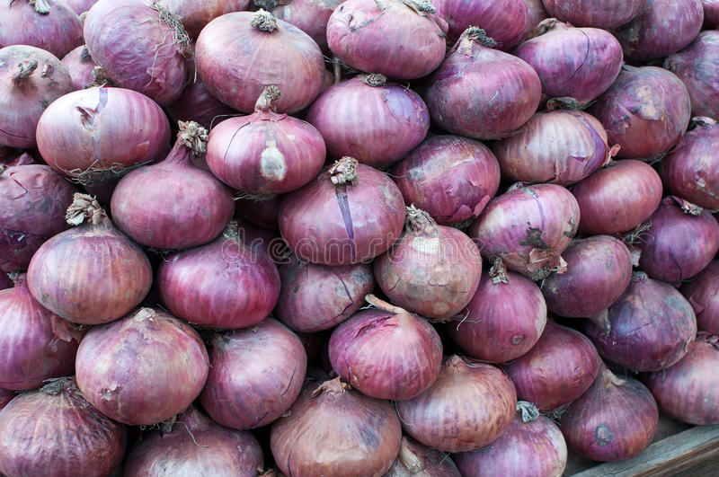 Download Piles of Onions stock image. Image of peaches, market - 20802699