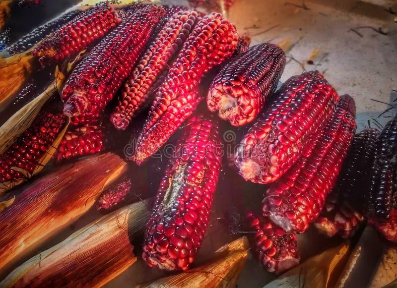 piles of purple sticky rice corns stock images