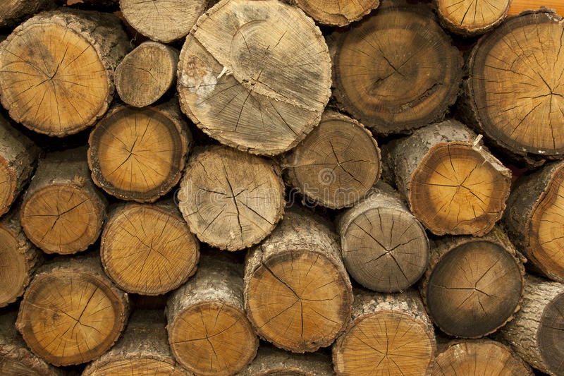 piles trä arkivfoton