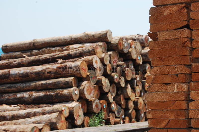 Download Piles Of Wood Boards And Original Woods Stock Photo - Image: 14465076