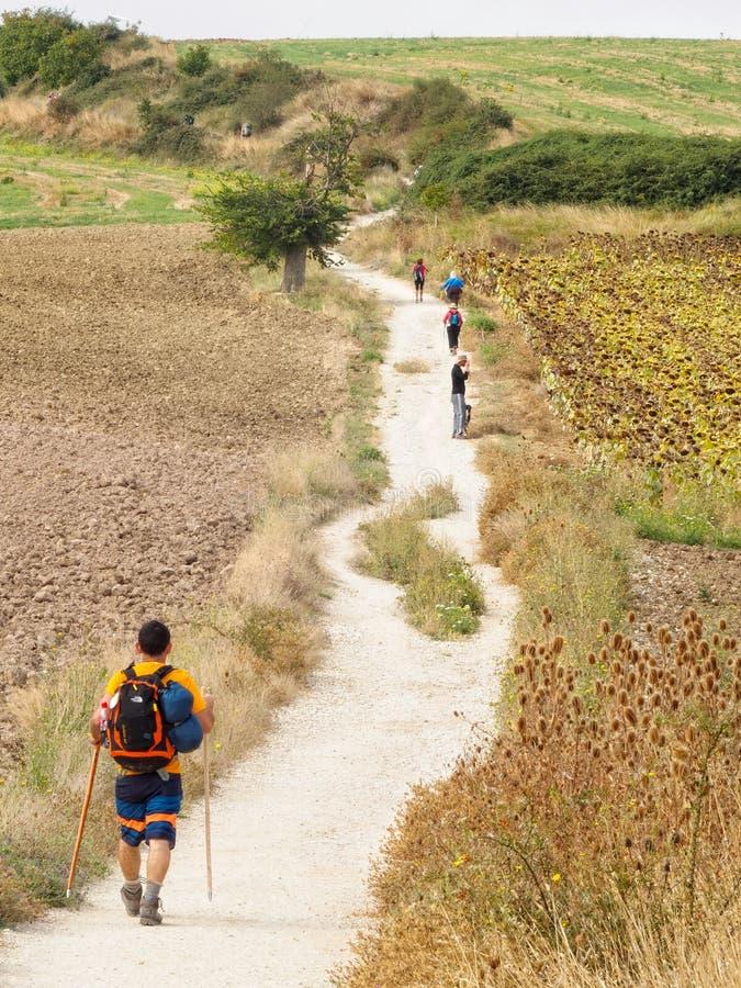 Pilgrims on the Camino - Pamplona. Pilgrims on the Camino between Cizur Menor and Zariquiegui - Pamplona, Navarre, Spain, 5 September 2014 royalty free stock photography