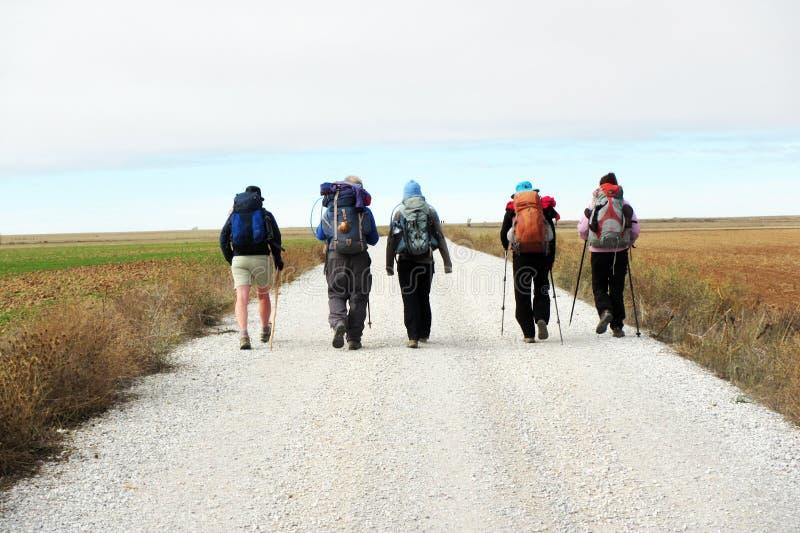 Pilgrims line. Pilgrims along the historic pilgrimage way to santiago de compostela in spain royalty free stock image