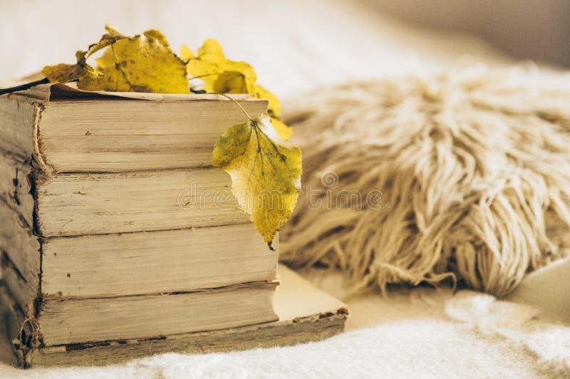 Pilha caótica de cores pastel dos livros velhos com folhas de outono Foco seletivo do inverno do outono do conceito com espaço da imagens de stock royalty free