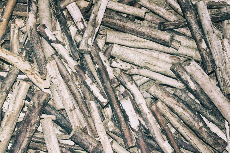 Pilha da composição dos ramos de árvore como uma textura do fundo galhos quebrados no assoalho da floresta imagens de stock