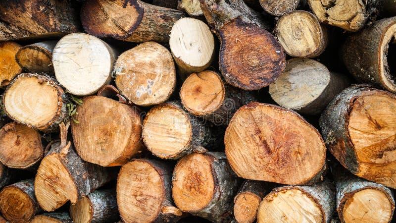 Pilha da madeira fotos de stock