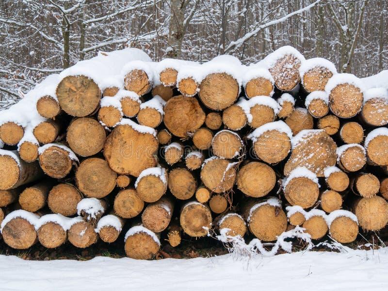 Pilha da madeira desbastada do incêndio preparada para o inverno imagens de stock royalty free