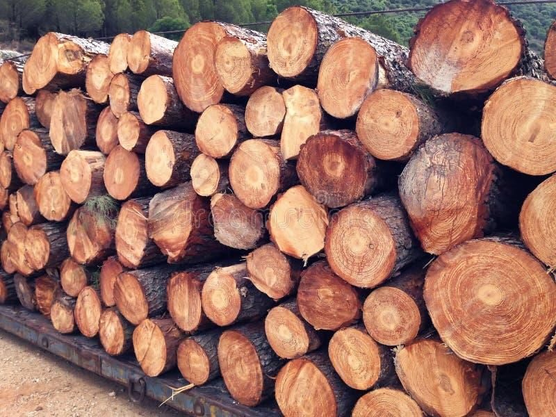 Pilha da madeira pronta para a expedição fotografia de stock royalty free