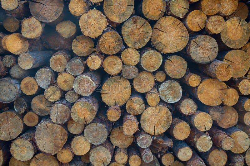 A pilha da madeira registra o armazenamento para a indústria imagem de stock