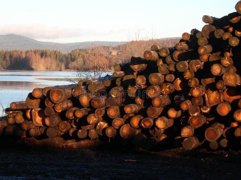 Pilha da madeira serrada foto de stock royalty free