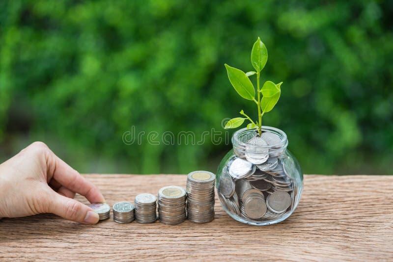 A pilha da terra arrendada da mão de moeda e o frasco com crescimento brotam a planta como foto de stock