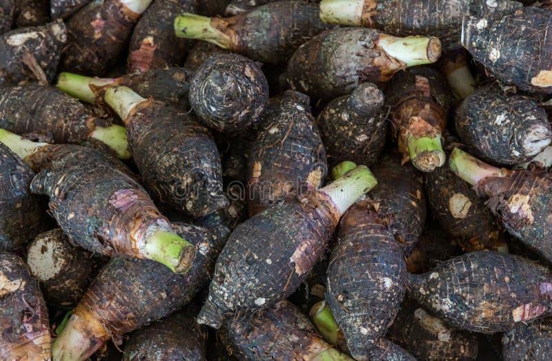 Pilha da venda a retalho fresca da raiz de taro no supermercado fotos de stock