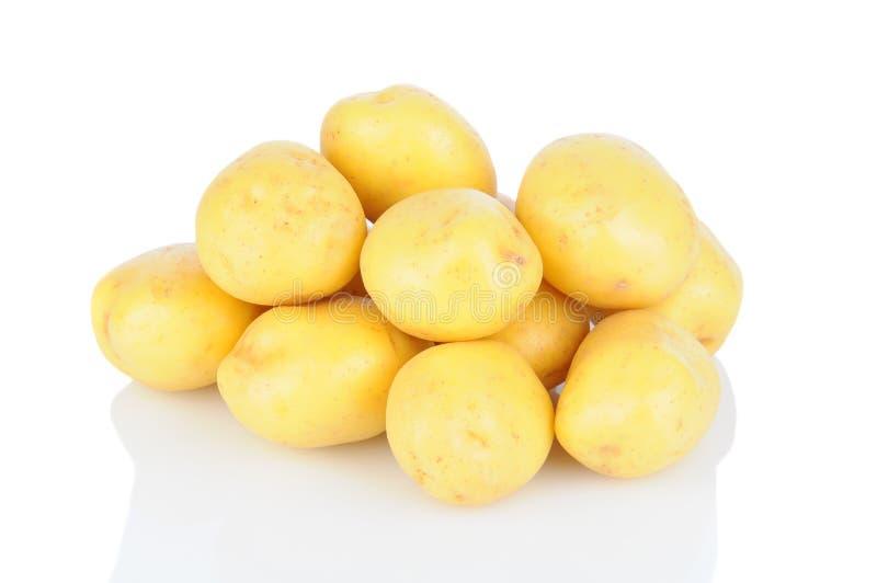 Pilha das batatas brancas fotografia de stock royalty free