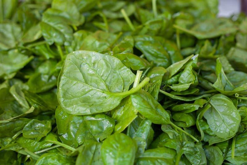 Pilha das folhas verdes frescas dos espinafres imagens de stock