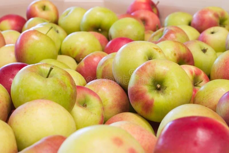Pilha das maçãs imagem de stock