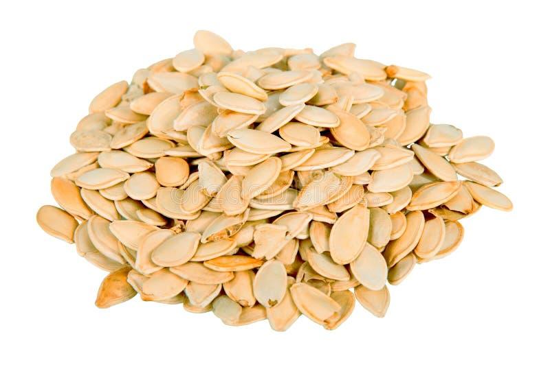 Pilha das sementes de abóbora isoladas no branco imagem de stock royalty free