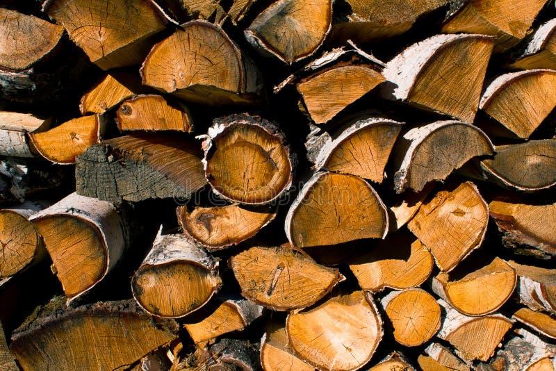 Pilha de árvores abatidas, madeira, pilha da lenha foto de stock royalty free